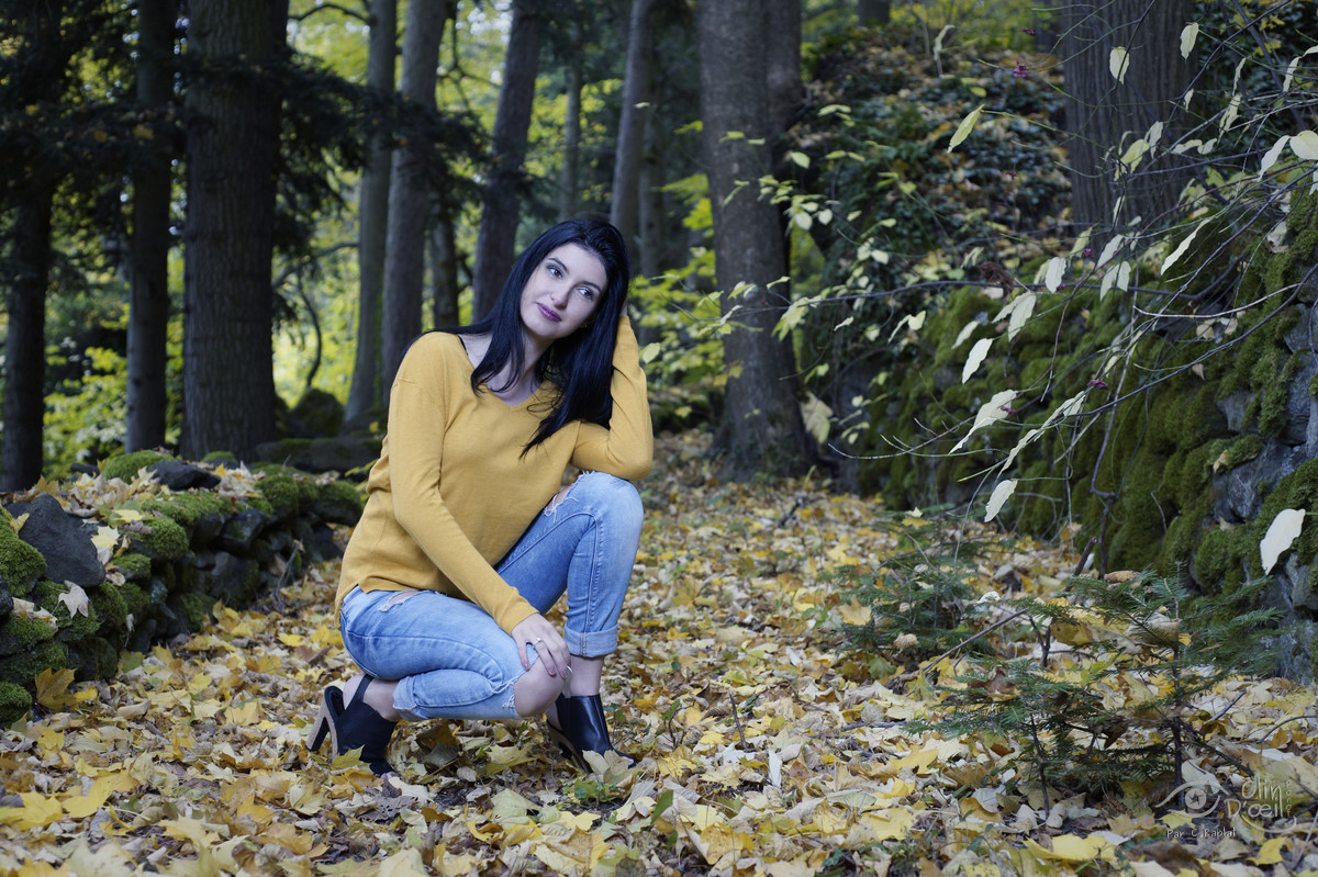 Louana en automne portrait femme en exterieur clin d for Shooting photo exterieur foret